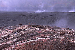 Steam Vents in Kilauea Iki Crater