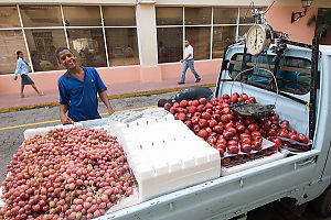 Truck Selling Fruit