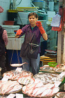 Fish Monger Weighing Fish