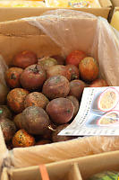 Box Of Passion Fruit