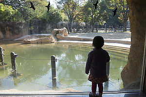 Claira Standing To Watch Elephant