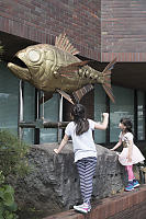 Human Power Fish Sculpture