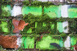 Green Brick And Shadows