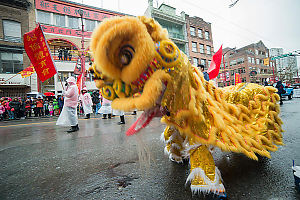 Yellow Lion Dancing Close