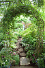 Arch In Back Yard