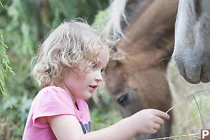 Kaylee Feeding Pony Grass