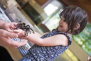 Claira With Tarantula
