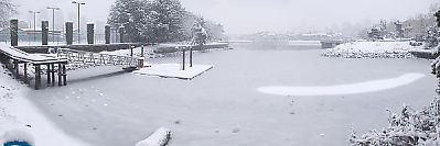 Alder Bay In Snow