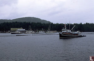 View of Shearwater Marina