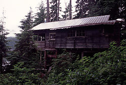 Cabin Without Exterior
