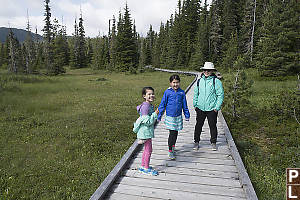 Walking On Alpine Boardwalk