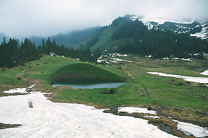 Small Lake In Meadow
