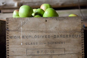 High Explosive Apples