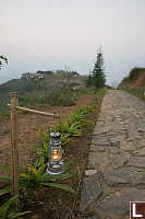 Lantern Next To Road