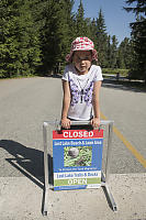 Toad Migration Sign