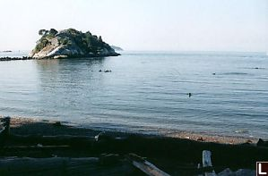 Left Side of Cove